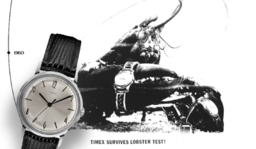 TIMEX: Timeless in a world full of change